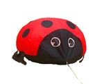 4ft Ladybug Ground Bouncer