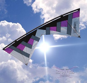 Rev New York Minute STD Purple - Kite & Frame Only